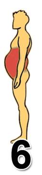 Resultado de imagen para grasa corporal revela tus problemas